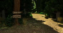 ForestCrossroads